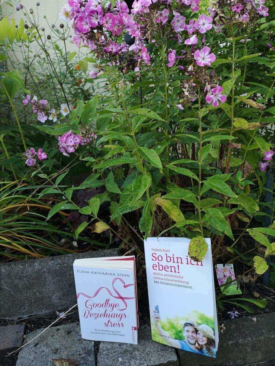 Ratgeber zu Beziehungen mit Blumen in Barbaras Garten