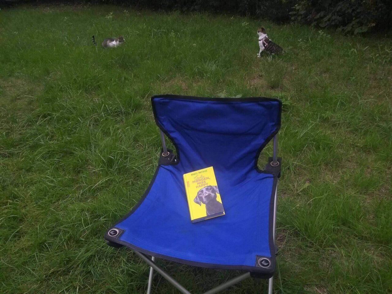 Die Katzen im Garten und der Campingstuhl mit dem Buch Guten Morgen, Miss Happy!