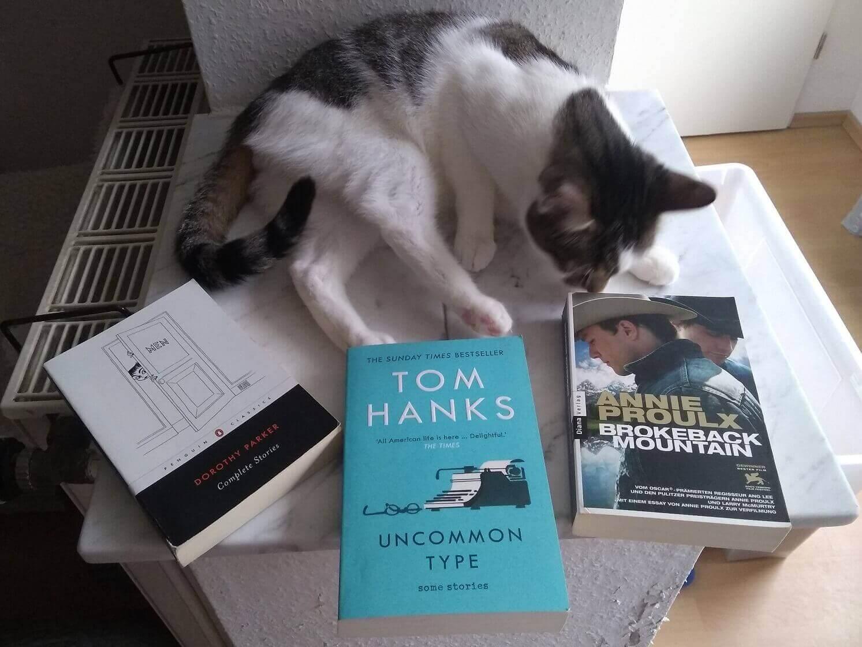 Tom Hanks, Dorothy Parker, Annie Proulx: Kurzgeschichten aus den USA