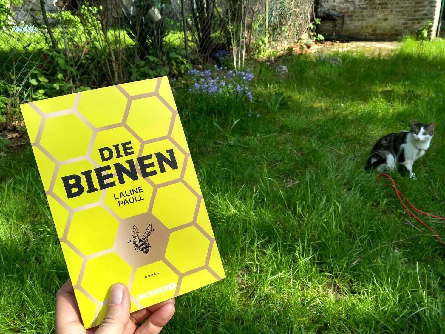<i>Die Bienen</i>: Abenteuer im Bienenstock