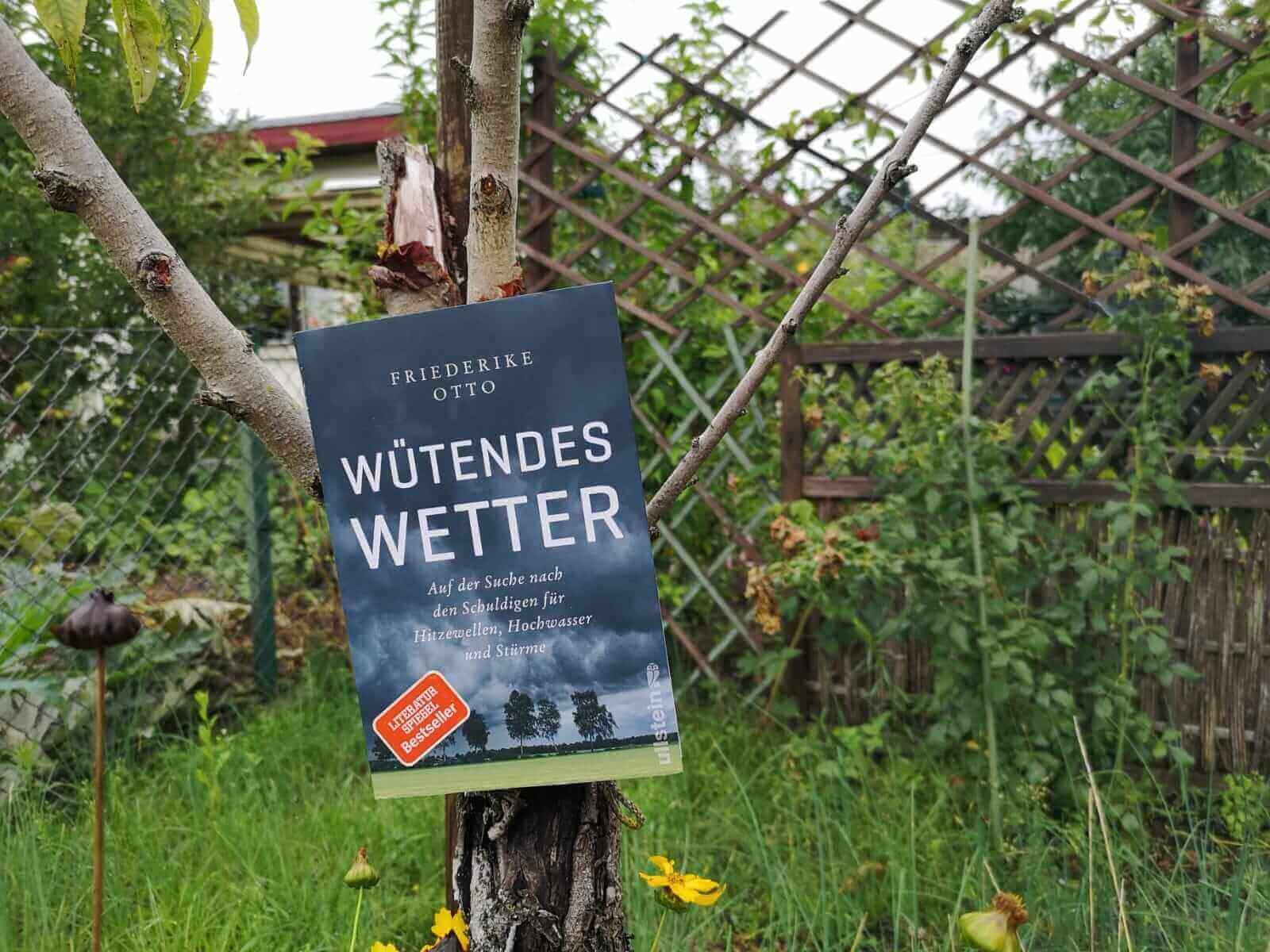 You are currently viewing Ein Buch über den Klimawandel: <i>Wütendes Wetter</i> von Friederike Otto