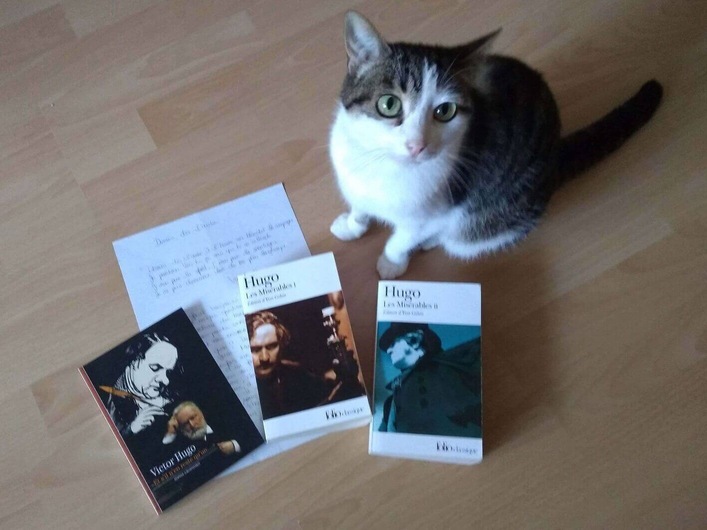 Read more about the article Victor Hugo: Gesellschaftskritik aus Frankreich